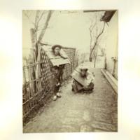 ace_951.jpg
